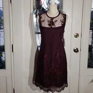 Feminine,  Nanette Lapore,  Lace dress size 8.